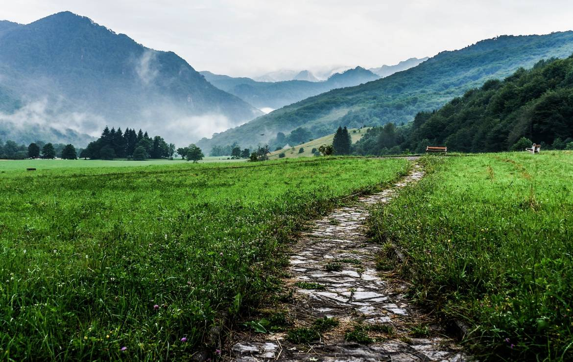 Strategies For Paving Your New Path